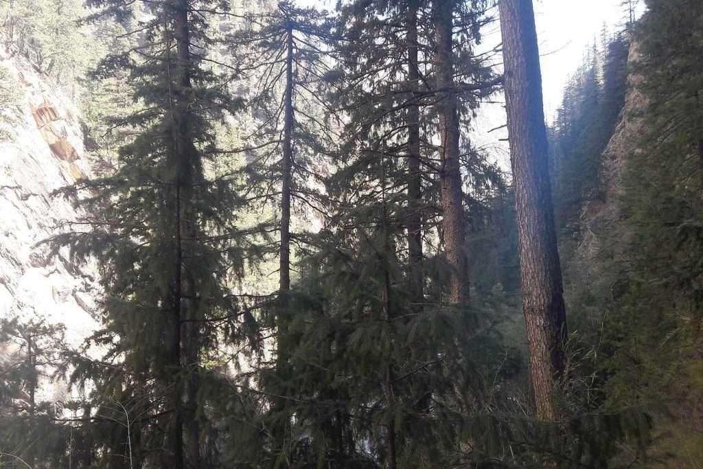 Trek to Shey Phoksundo Lake